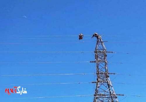 فردا پنج پروژه برقی در برق منطقهای فارس افتتاح میشود