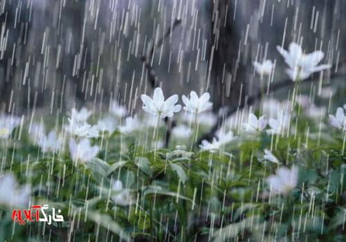 فعالیت سامانه بارشی در استان بوشهر ادامه دارد