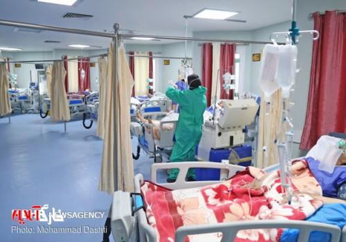 ۴۵۱ بیمار کرونایی در استان بوشهر بستری هستند/ ۷ مورد فوتی جدید