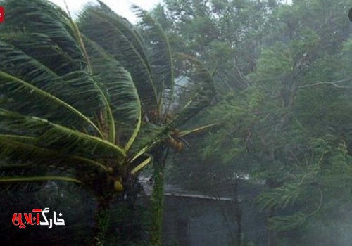 باد و باران مهمان استان بوشهر میشود