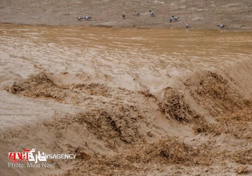 سامانه بارشی اخیر در استان بوشهر طی ۴۰ سال گذشته بیسابقه بود