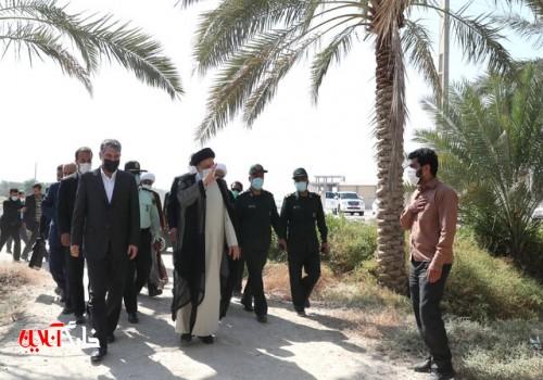 حل مشکل آب نخلستانهای بوشهر در اولویت است