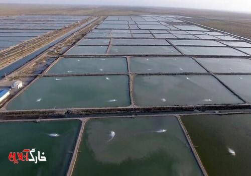 ارائه تسهیلات مناسب برای توسعه آبزیپروری در استان بوشهر