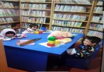 وقتی کتابها در قفس کتابخانه خارگ محصور شدند.