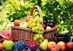 حکایت میوه های تابستانی و کرونا/کولرهای خودرو ویروس منتشر می کنند