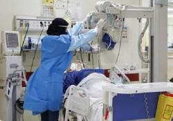 ۷۴ بیمار در بخشهای کرونایی استان بوشهر بستری شدند/ ترخیص ۶۲ نفر