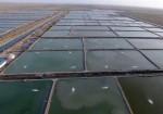 انتقال آب دریا به بخش مرکزی دشتی و تنگستان برای پرورش آبزیان