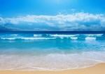 خلیج فارس متلاطم است/ دریا از فردا آرام می شود